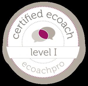 eCoachPro certificering THEOS Coaching